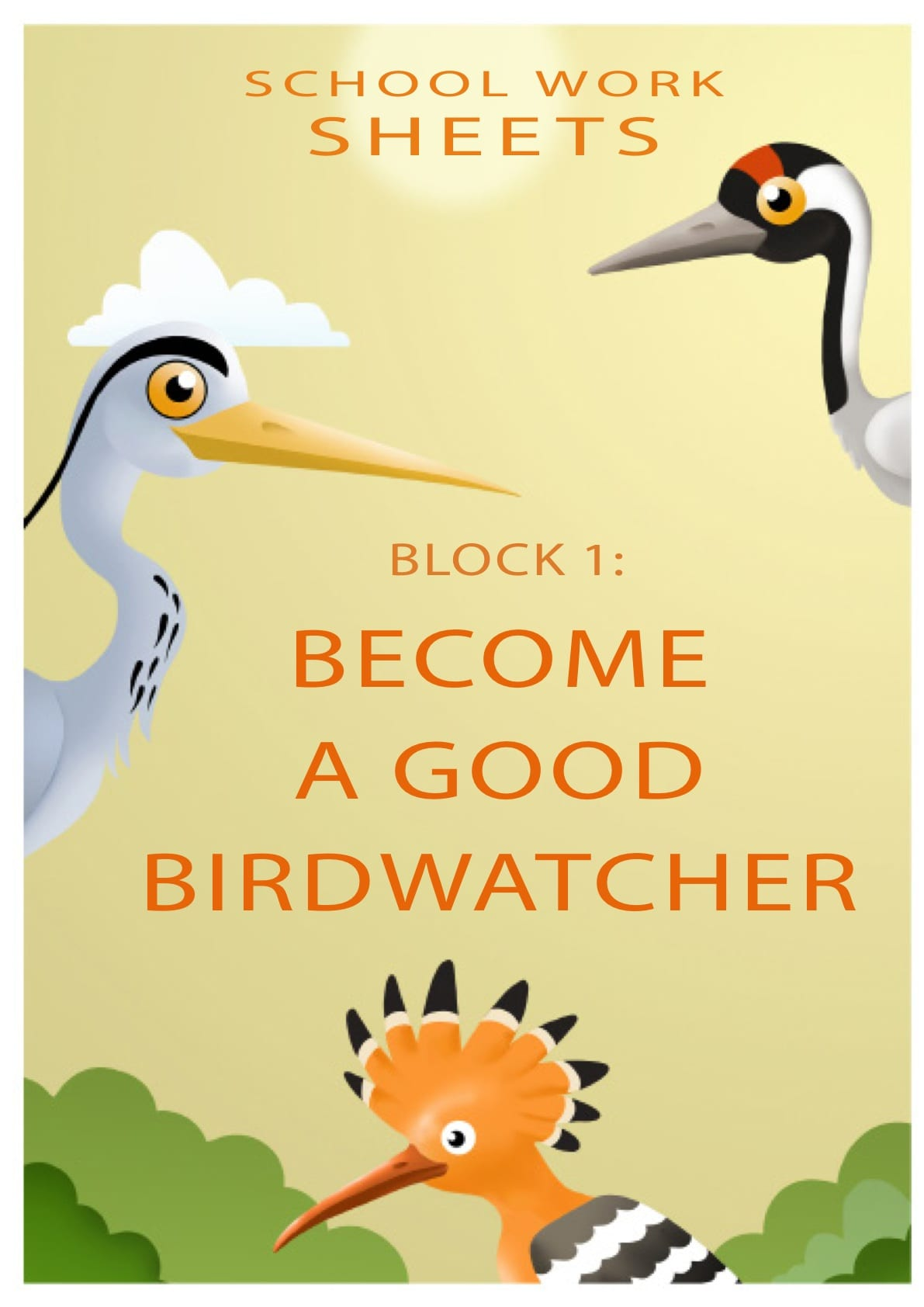 Become a good birdwatcher