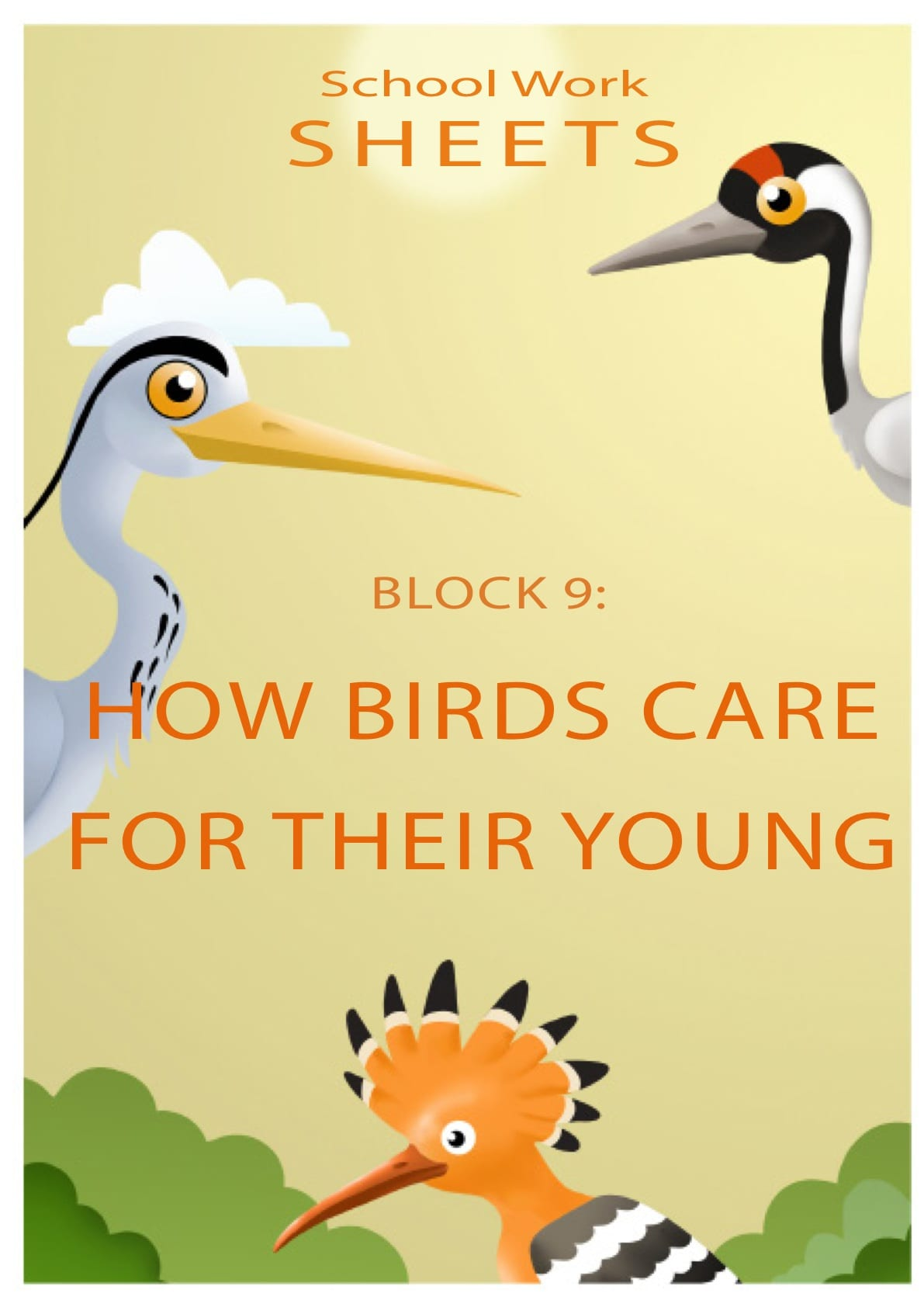 How birds care for their young