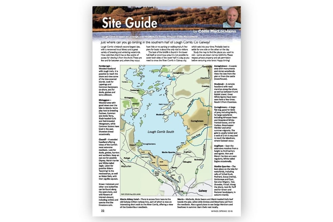 Map Of Ireland Headlands.Governance Documents And Reports Birdwatch Ireland