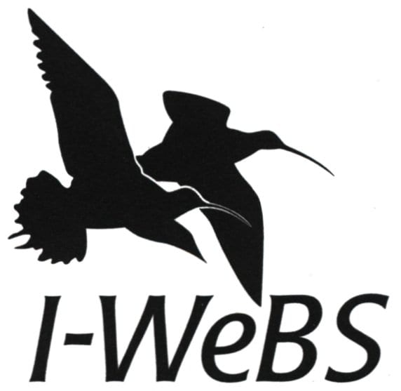 Irish-Wetland-Bird-Survey-Logo