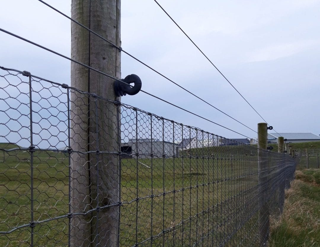 Predator-Proof-Fence-wader-site-Donegal