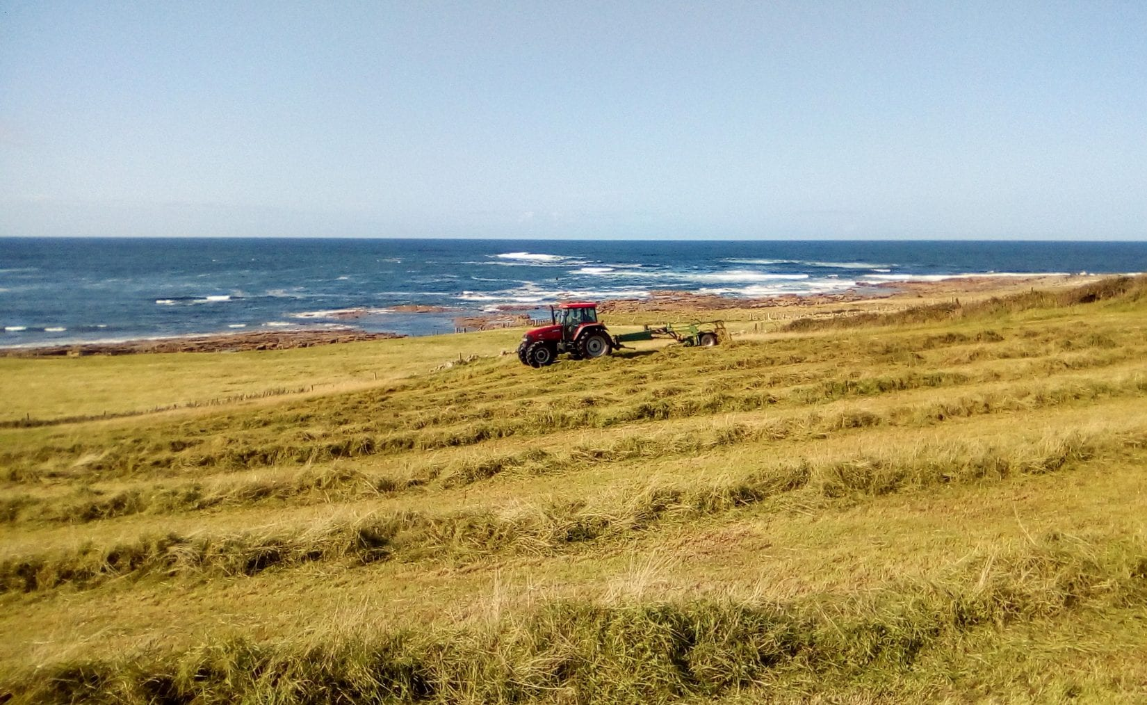 tractor-carrying-out-corncrake-friendly-mowing