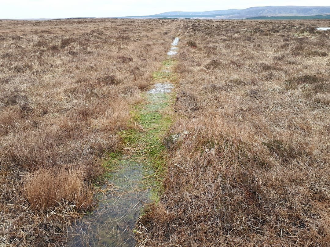 water-filled-drain-on-blanket-bog-at-fiddandarry-ox-mountains