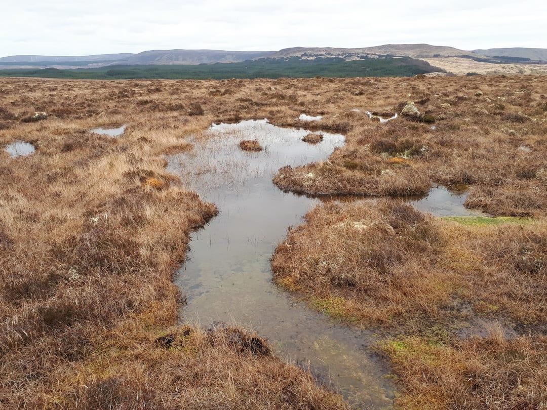bog-pools-on-blanket-bog-at-fiddandarry-ox-mountains