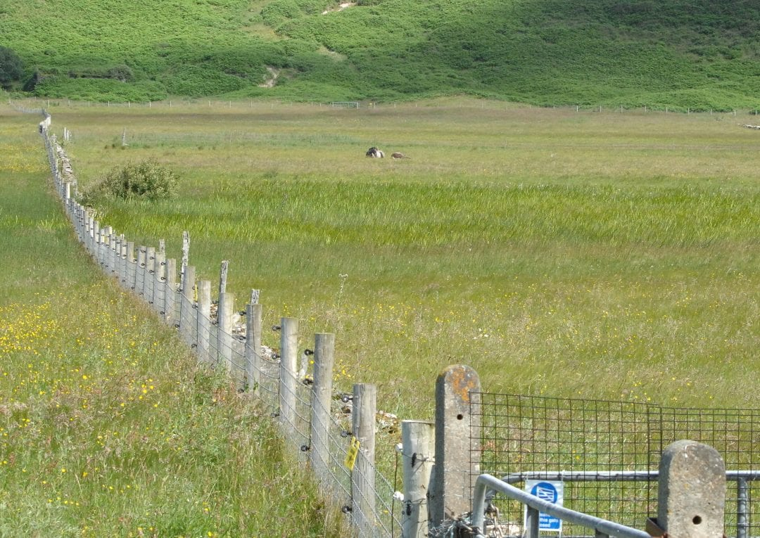 Sheskinmore-electric-fence