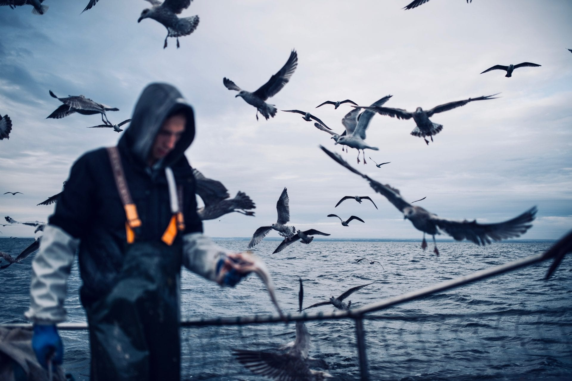 fisherman-surrounded-by-seagulls