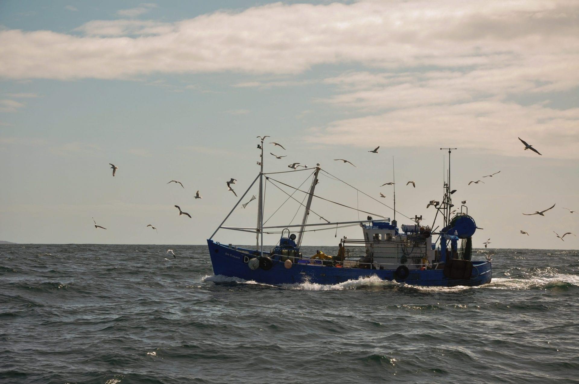 Fishing Boat (Philipp Hullmann)
